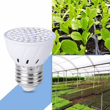 CanLing 15W 20W LED Phyto Lamps E27 LED Fitolampy 2835 AC85-265V Full Spectrum Led Plant Grow Light Bulb For Hydroponics System hot sale 15w gu5 3 gu10 full spectrum led grow light spotlight ac85 265v lamp bulb flower plant greenhouse hydroponics system