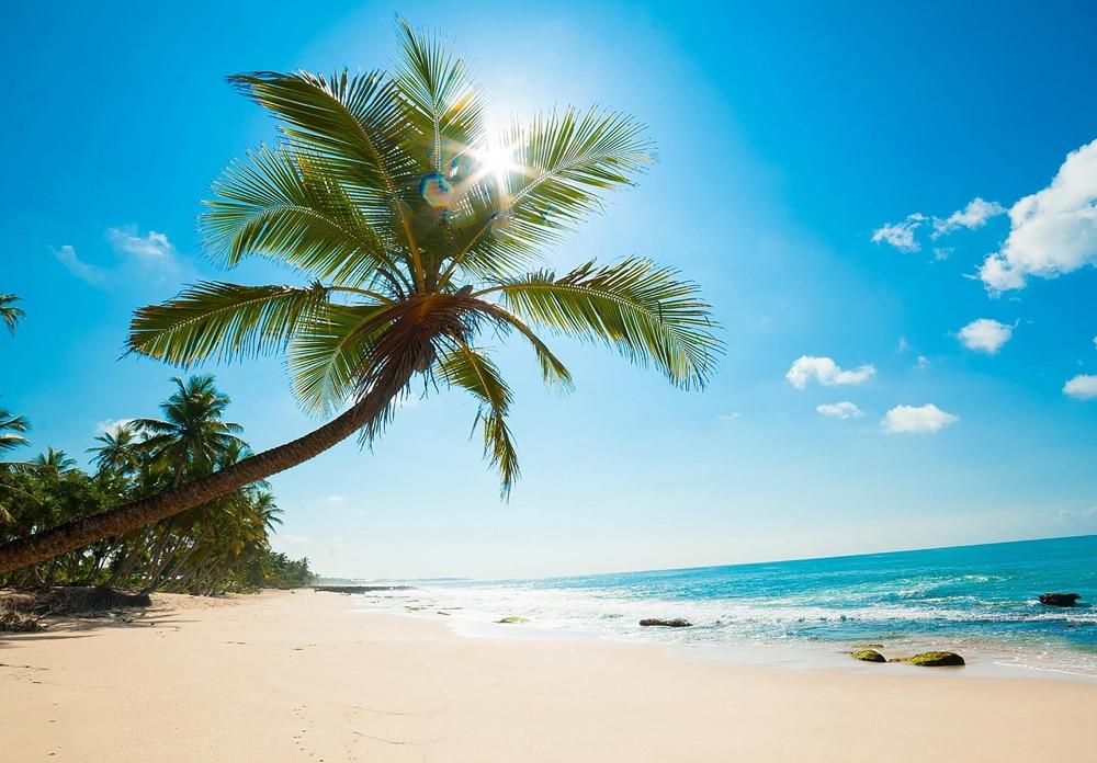 HUAYI 8x12ft Horizontal belle plage paysage Art tissu photographie fond nouveau-né Photo Studio Prop toile de fond XT-5875