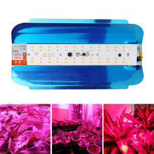 LED COB Full Spectrum Plant Phytolamp 50W 100W 220V Waterproof LED Growing Light Phyto Lamp For Indoor Flower Vegetables Seeds(China)