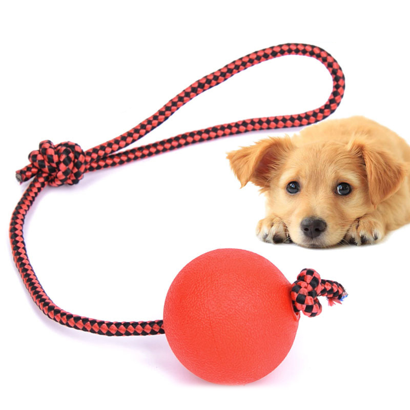 Indestructible Dog Tug Toy: 1pc Indestructible Dog Ball On A Rope For Pet Puppy Toys