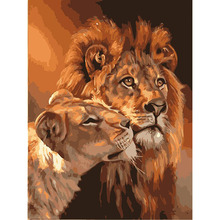 Lion Couple. Painting By Numbers Kit.acrylic,40cmx50cm-c