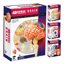 Human Body Skeleton, Anatomy Skull Manikin, Anatomy Life Size Biology Model, 4D Educational Puzzle Medical Science Doll Toys