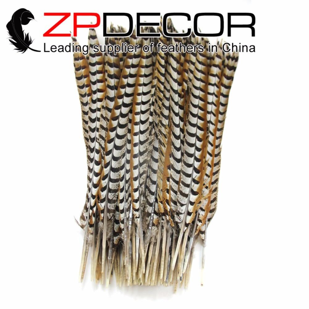Zpdecor 50 개/몫 60 70 cm (24 28 inch) 최고 품질의 자연 리브스 venery 꿩 꼬리 깃털 카니발 디자인 장식-에서깃털부터 홈 & 가든 의  그룹 1