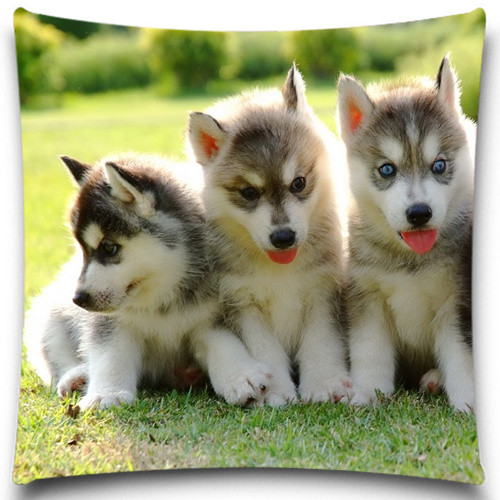 2016 Christmas Halloween Animal Decorative Cushion Covers Cotton Polyester Throw Pillow Case for Sofa Decor Dogs Pattern
