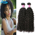 Peruvian Kinky Curly Virgin Hair 2 Bundle Deals Curly Weave 8A Grade Virgin Unprocessed Human Hair Afro Kinky Hair Cheap Bundles