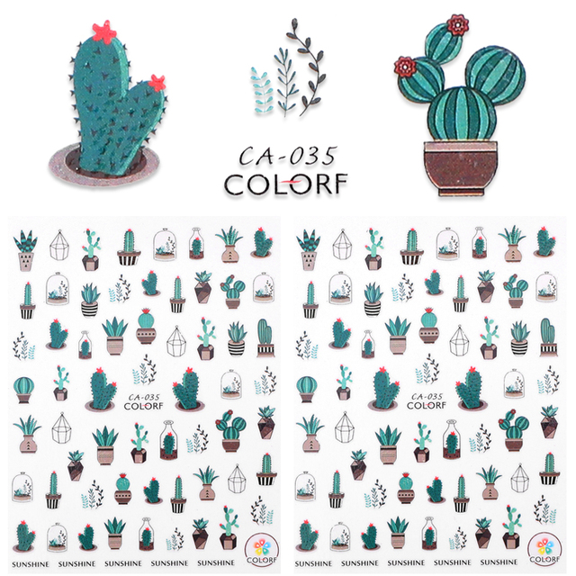 Where can i buy cactus water