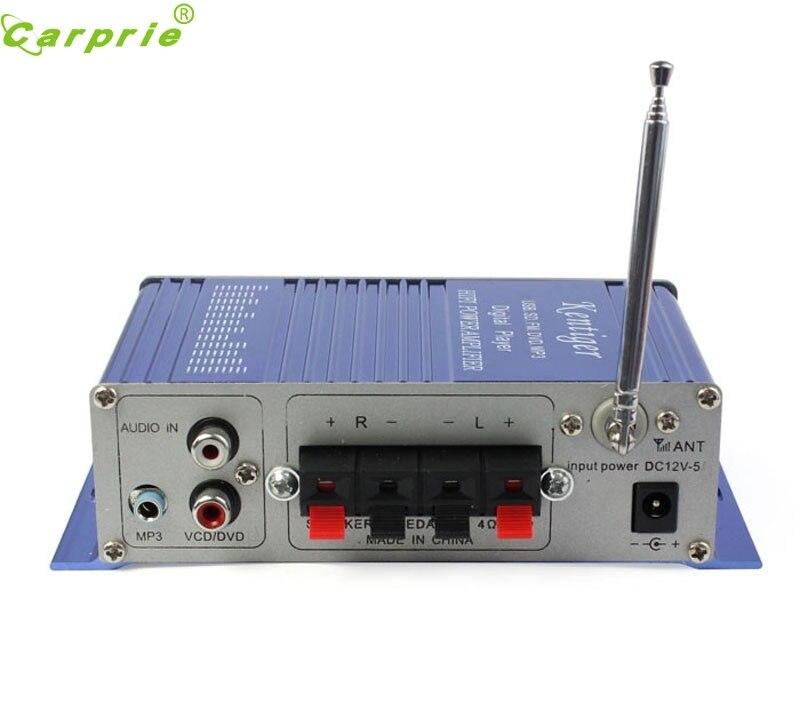 2016 Breeze Audio HiFi Class 2.0 Audio Stereo Digital Power