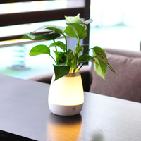 Creative brief vase touch induction lamp Exquisite combo vase night light Home furnishings