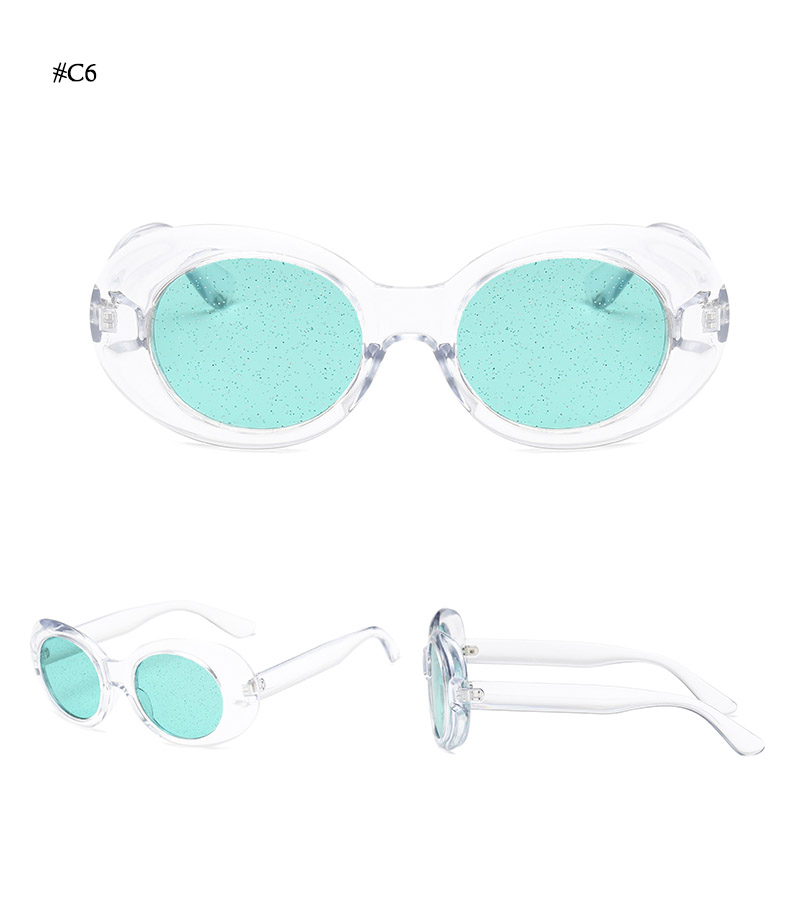Oval Shape Sunglasses (30)
