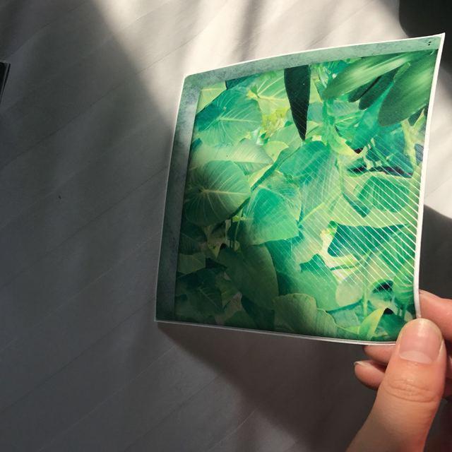 Funlife 3D Vasca Da Bagno Adesivi Tappetini Da Bagno, foresta pluviale antiscivolo Impermeabile Auto-adesivo Vasca Decalcomanie Appliques per le Mattonelle Della Parete Pavimento