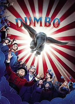 《小飞象》2019年美国奇幻,冒险电影在线观看