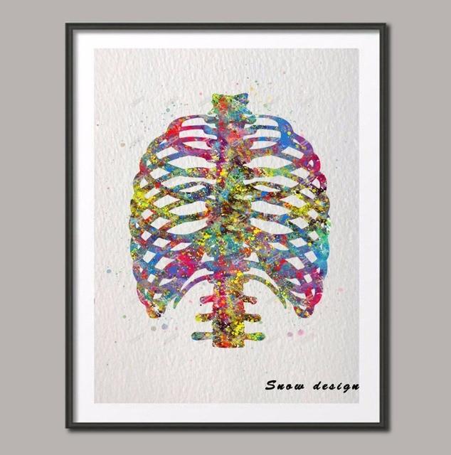 Acuarela original Anatomía Humana pared arte lienzo pintura costilla ...