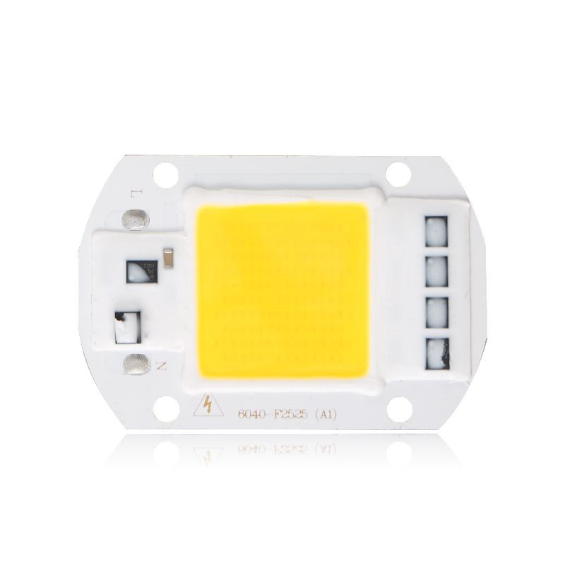 LED COB Lamp Chip 110V 230V 220V 10W 20W 30W 40W 50W Input IP65 Smart IC DIY For LED Spotlight Floodlight