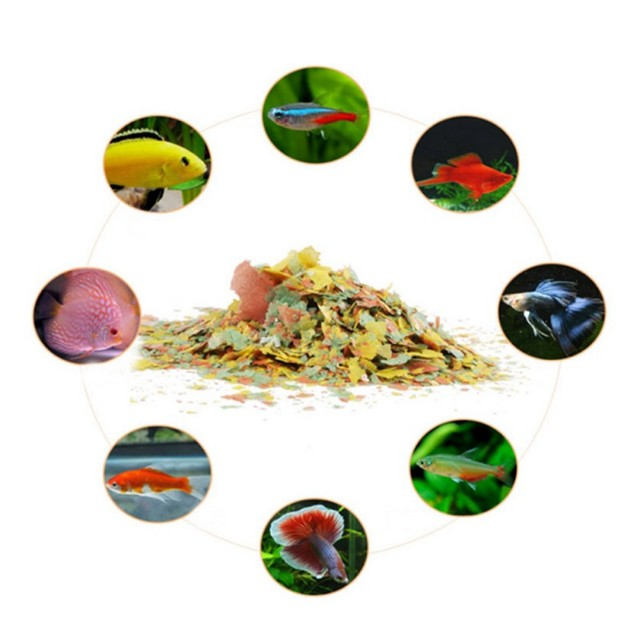 Aquatic Pet Highly Nutritious Fish Feeders Color Enhancing Food Goldfish Aquarium Tropical Fish Tanks Grow Fast Healthy Supplies 2