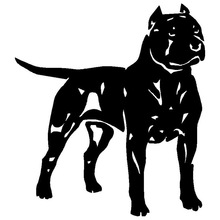Pit Bull American Staffordshire Terrier Decal Car Styling Decoration 13.5*15.1CM