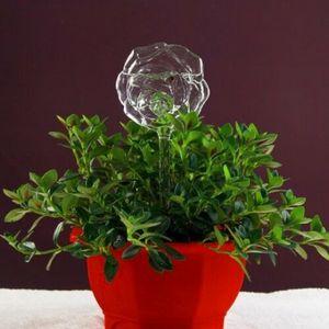 Image 4 - Alimentador de agua automático para plantas y flores, dispositivos de autoriego, alimentador de agua de vidrio transparente, jarrones con forma de pájaro, 6 tipos