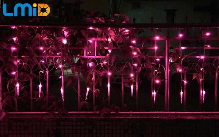 LED Curtain Light (9)