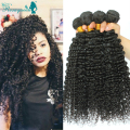 Brazilian Virgin Hair Kinky Curly  4Pcs/Lot Brazilian Human Hair Weave Bundles 7A Brazilian Deep Curly Hair Rosa Hair Products
