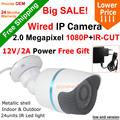 Big SALE! H.264 Waterproof 1920*1080P 2.0MP 24 leds IP Camera ONVIF 2.0 IR CUT Night Vision P2P Plug and Play With 12V2A Power