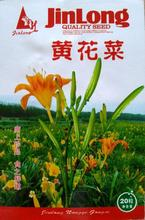 1 original pack 20pcs citron daylily seeds natural food day lily citron daylily, specialty vegetable seeds  free shipping