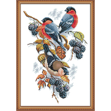 NKF Red-bellied Bird Stamped Cross Stitch Patterns DIY Kits