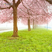 Laeacco Spring Park Cherry Tree Grassland Scenic Photography Backgrounds Customized Photographic Backdrops For Photo Studio laeacco mountains snow spring cherry blossoms scenic photography backgrounds customized photographic backdrops for photo studio