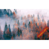 Forest Fog landscape photography pictures silk fabric 90X60cm art painting calligraphy Wall room decor