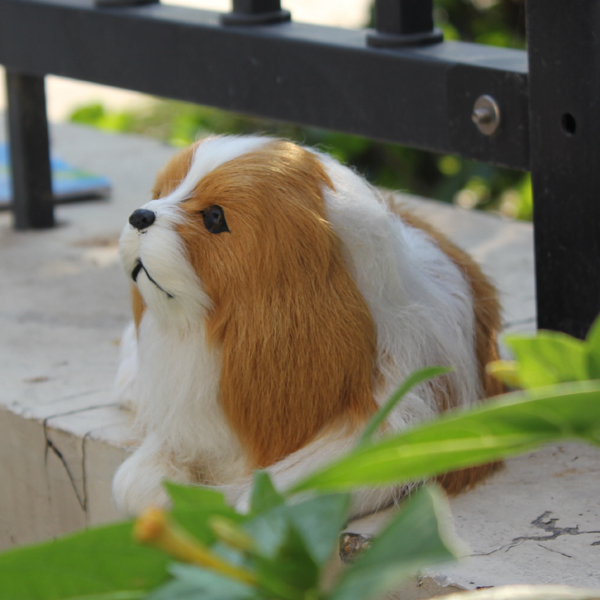 2015 Cute Hush Puppies Dogs And Puppies For Sale In Garden Buildings