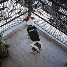 Fashion Summer Cute Dog