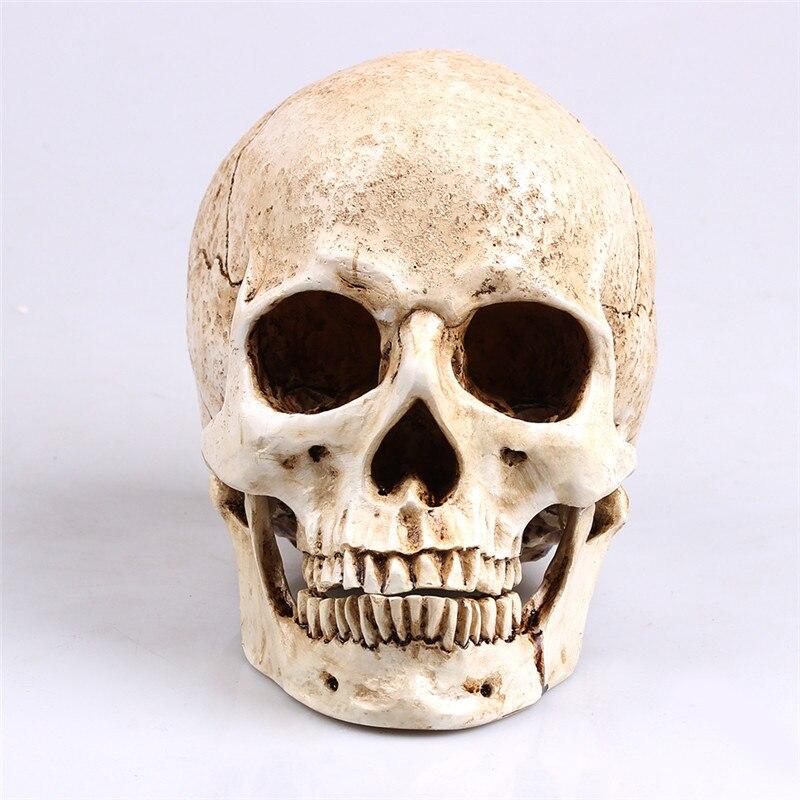 P-Flamme Weiß Kopf Menschliche Schädel Modell Replica Medical Realistische Lifesize 1:1 Emulieren Harz Handwerk Schädel Für Dekorative