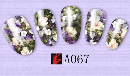 A067(1)