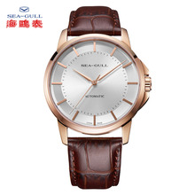 SEA-GULL Business Watches Mens Mechanical Wristwatches 50m Waterproof Leather Valentine Male 519.12.6066