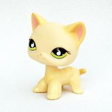 Real pet shop lps brinquedos gatinho amarelo pé #733 original velho cabelo curto gato animal raro figura animal de estimação