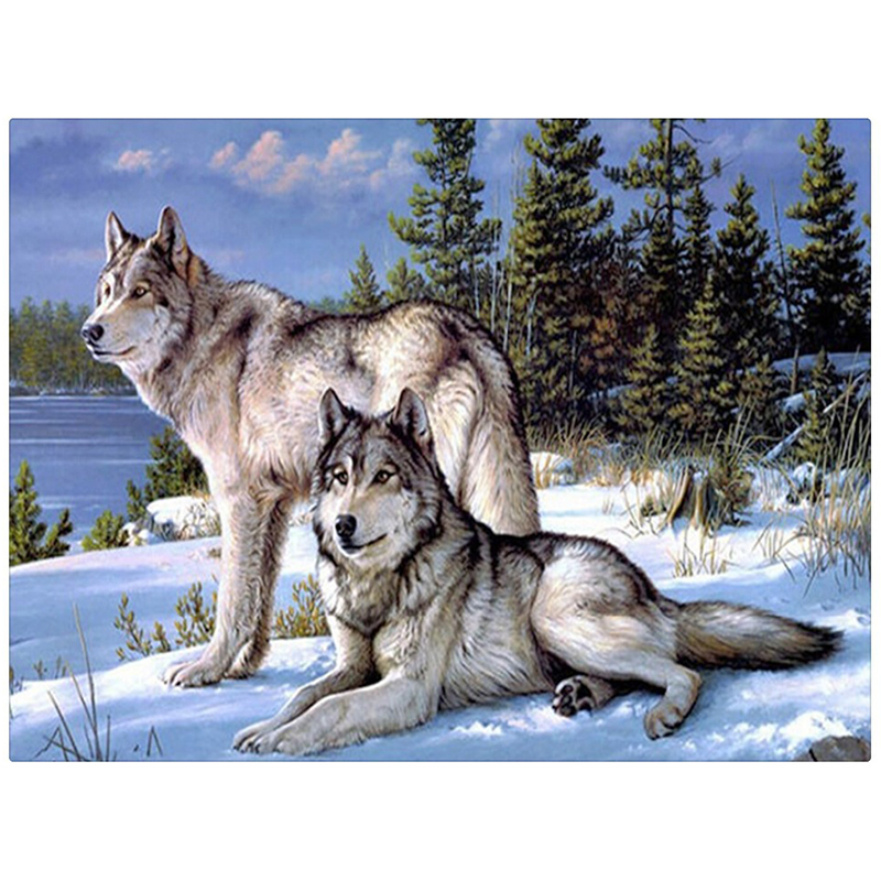 Hantverk Diamantbroderi Wolf Diy Full Diamond Painting Kit 30x40cm för Square Drill Strass Pastas Unfinish Room ZX