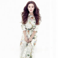 Women S Dress 2016 Spring Summer Dress For Ladies Silk Printing Full Butterfly Sleeve Retro Long