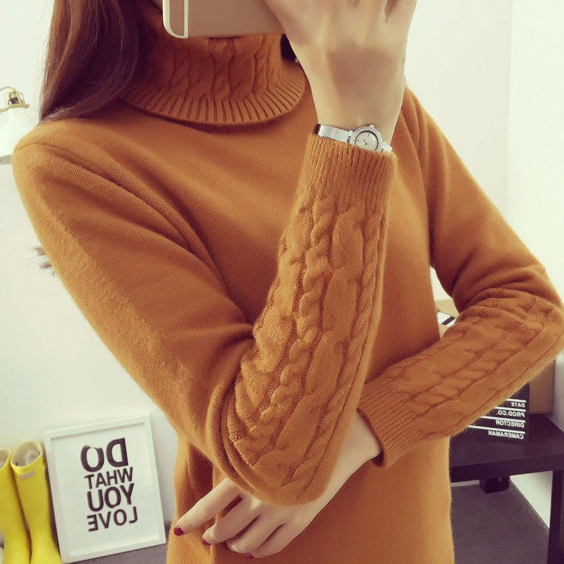2016-Women-Sweaters-And-Pullovers-Hot-Sweater-Women-Winter-turtleneck-sweater-twisted-thickening-slim-pullover-sweater (4)