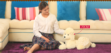 big plush poodle dog toy new stuffed flower skirt poodle dog doll gift about 70cm