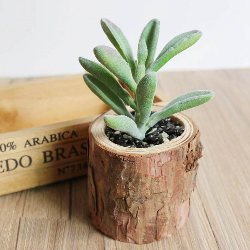 Artificial Succulents Plants Woody Potted Plant Home Desk Table Decoration Accessories Fake Plantas Artificial Cactus Bonsai in Artificial Plants from Home Garden