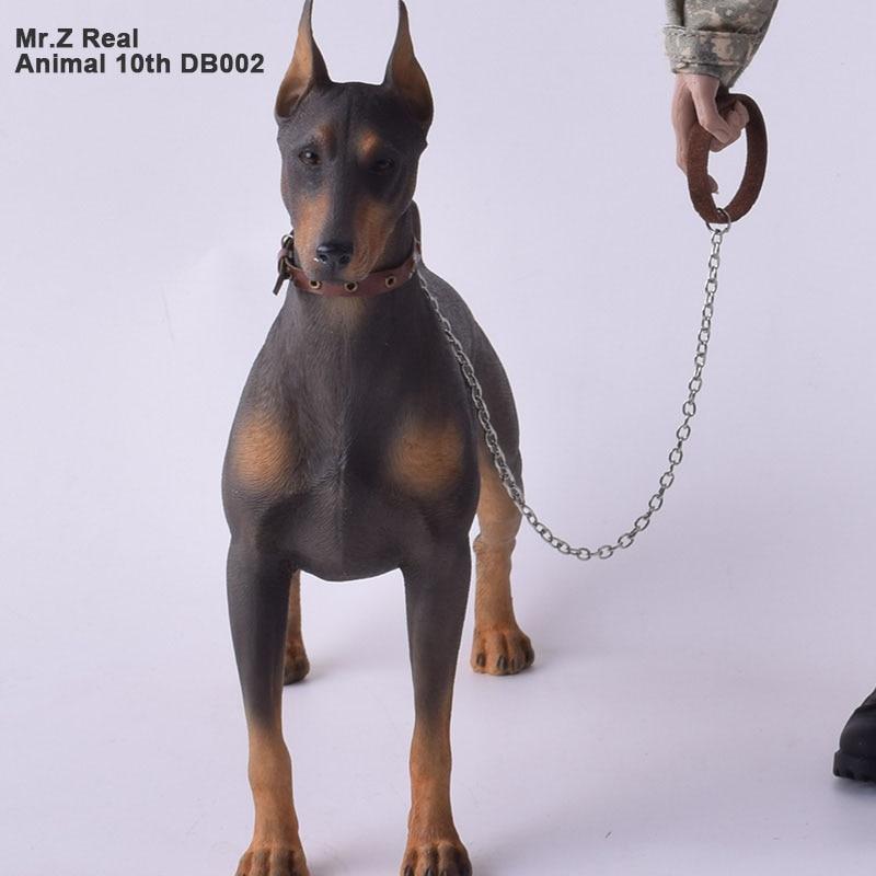 mr z rzeczywistym zwierza t 10th db002 1 6 niemiecki doberman kolekcjonerska figurka statua na