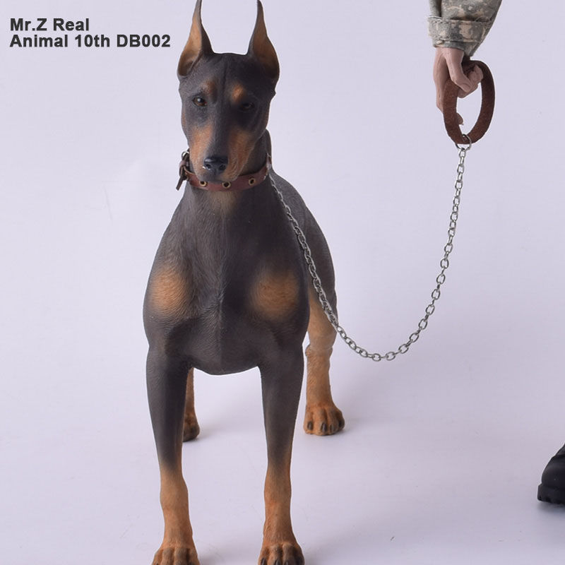 Mr.Z Real Animal 10th DB002 1/6 German Doberman Statue for 12 Inch HOTTOYS HT collectible action figure MOS Resin (Soft) военные игрушки для детей hot toys wt hottoys ht 1 6
