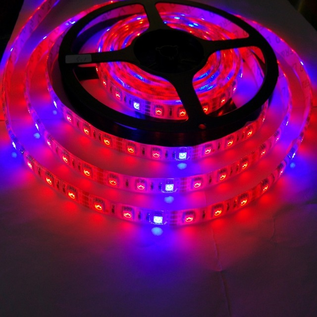 5m 5050 growing led strip light red blue 4151 for aquarium 5m 5050 growing led strip light red blue 4151 for mozeypictures Gallery