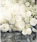 5x7FT White Floral F...