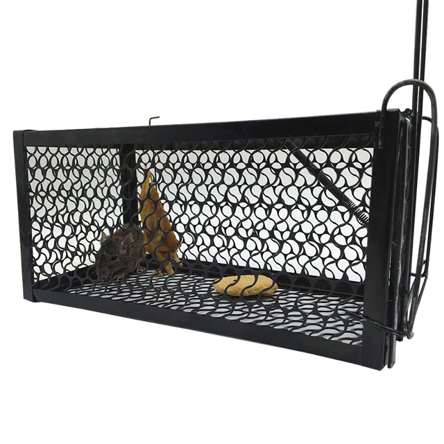Single Door Mice Traps Cage Mice Repeller C&ing Rat Trap Catch Bait Hamster Mouse Trap Cage  sc 1 st  AliExpress.com & Single Door Mice Traps Cage Mice Repeller Camping Rat Trap Catch ...