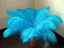 45-50เซนติเมตร Hot! ผู้ผลิตจัดส่งฟรีขาย10ชิ้นทะเลสาบสีฟ้าขนนกกระจอกเทศ18-20นิ้ว/
