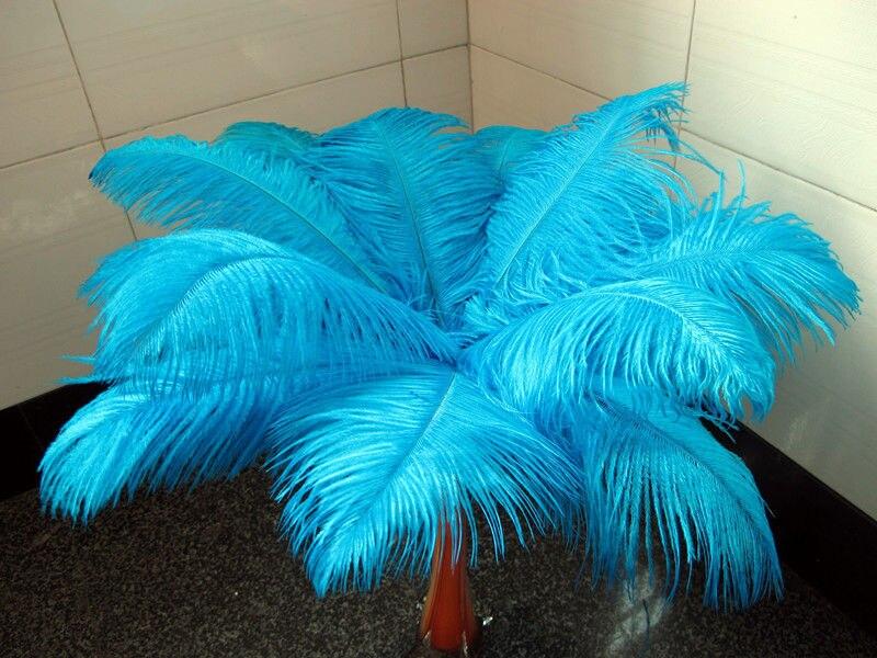 Horký! Výrobci přepravující zdarma 10 PCS Lake modré pštrosí - Umění, řemesla a šití