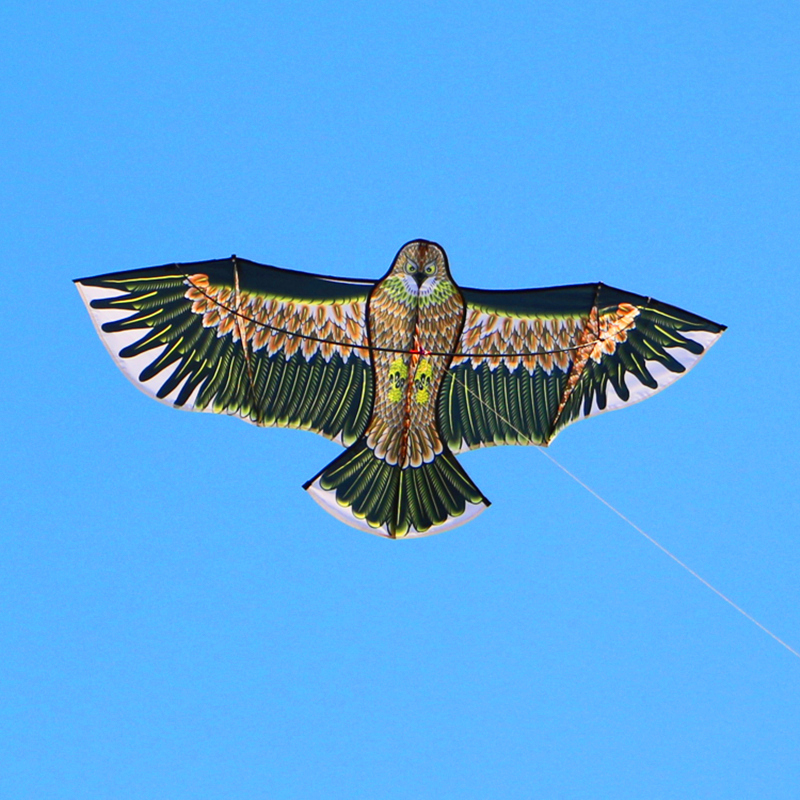 անվճար առաքում բարձրորակ արծիվ ուրուր նեյլոնե ripstop բացօթյա խաղալիքներ թռչունների kites երեխաներ պտտվել լողափ զվարճանք ծիածանոցի ուրուր գծ