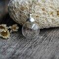 Wish Dandelion Seed Real Flor de la Bola de Cristal de Plata de Ley 925 Cadena Gargantilla Collar Mujeres Joyería Boho Vintage Fresco de Navidad