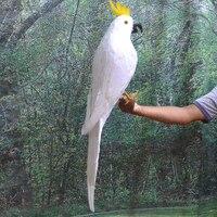 كبير 80 سنتيمتر محاكاة الببغاء ، الريش الأبيض الببغاء الببغاء الطيور نموذج حديقة المنزل الديكور هدية h1130