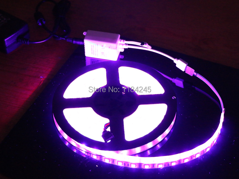 LED Strip Waterproof 5050 RGB Flexible Light 5M 300 SMD 24 Keys IR Remote