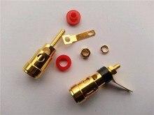 Bộ 50 Mini Vàng Bằng Đồng Thau Loa AMP Nhà Ga Liên Kết Bài Lò Xo Dạng Bấm